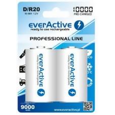 Аккумулятор everActive D/HR20 10000mAh BL 2шт