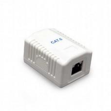 Розетка Cablexpert (NCAC-1F6-01) RJ-45, Cat6, внешняя, белый